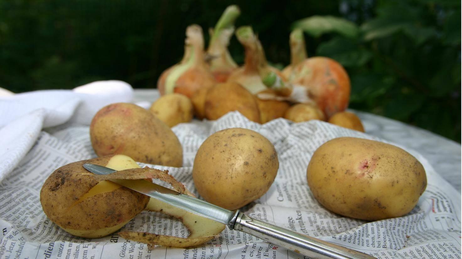 Schäle Kartoffeln am besten erst nach dem Kochen – das erhält viele Nährstoffe.