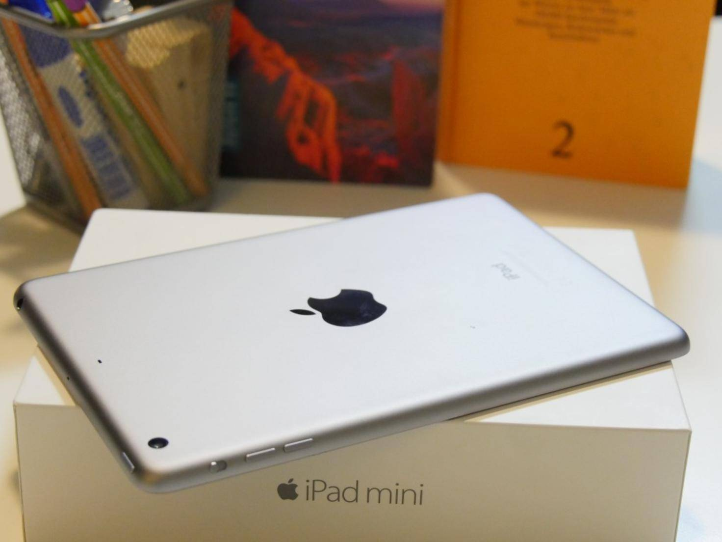 iPad mini 3 Rückseite