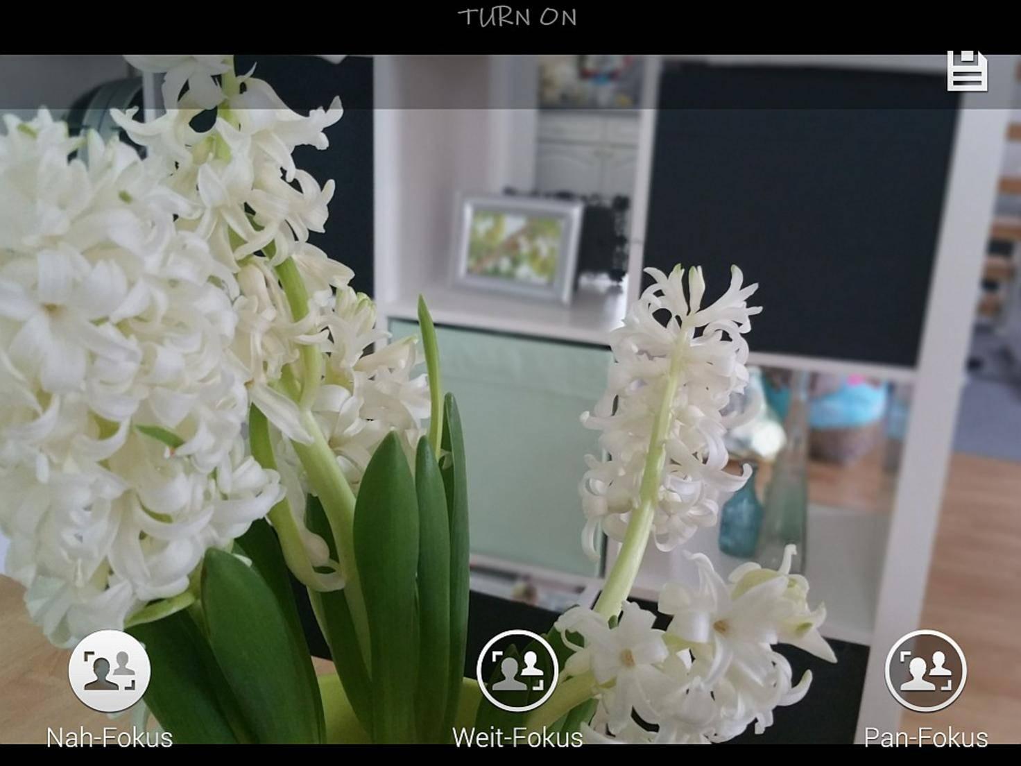 Hier ist die Blume im Vordergrund fokussiert.