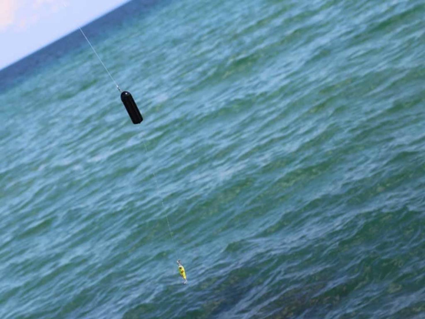GoFish Action-Cam