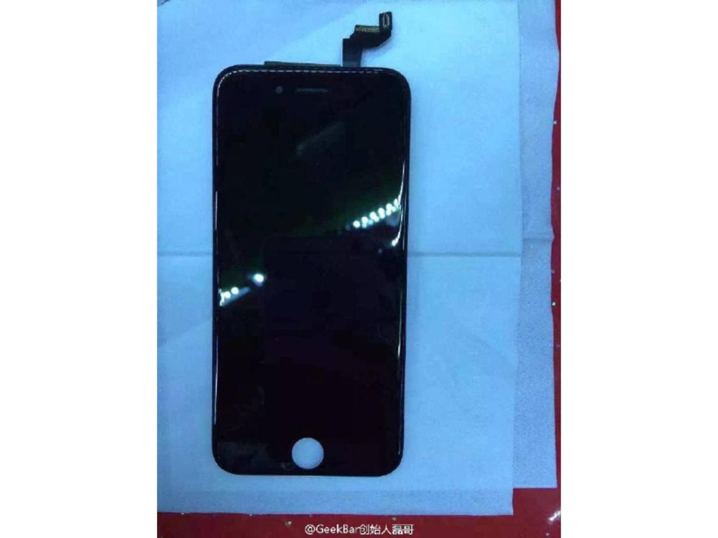 Angebliches Display des iPhone 6s.