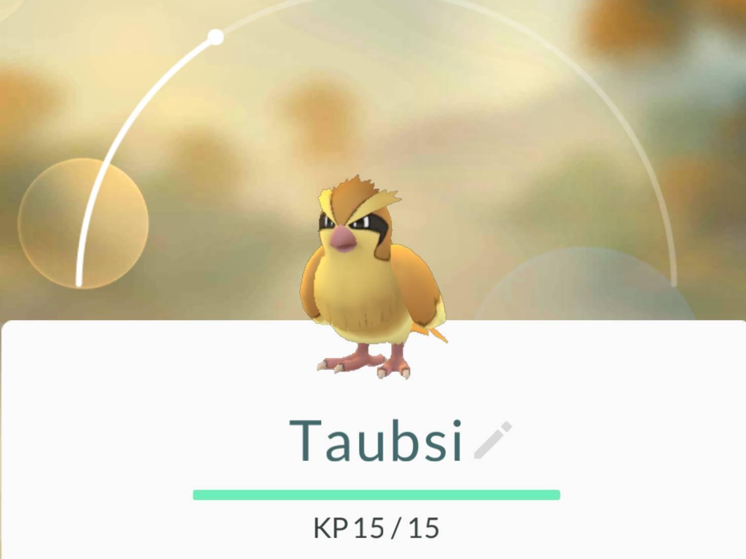 Pokemon_Taubsi