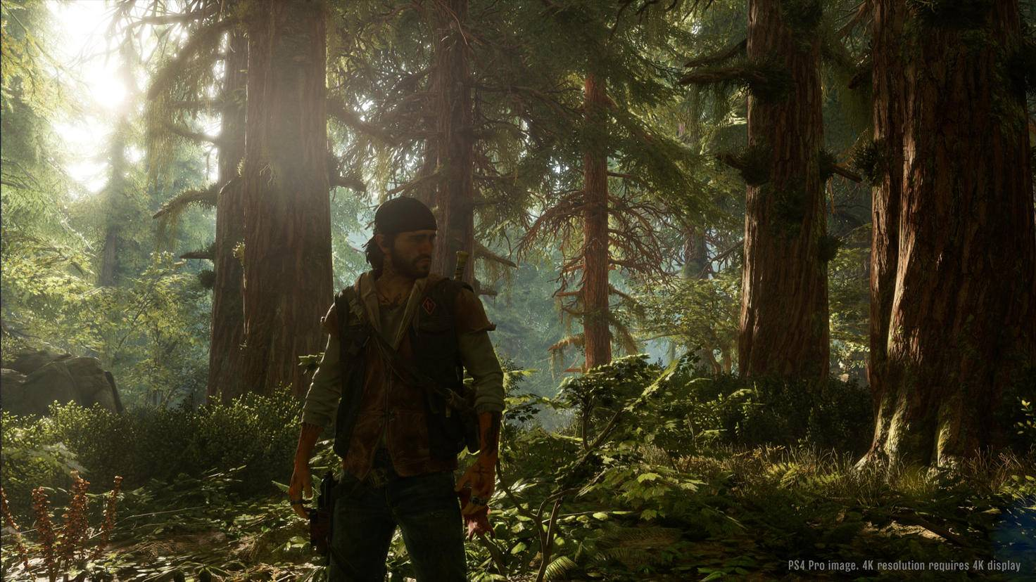 """Die dynamische Umwelt des Zombie-Spiels """"Days Gone"""" erinnert an """"The Last of Us""""."""