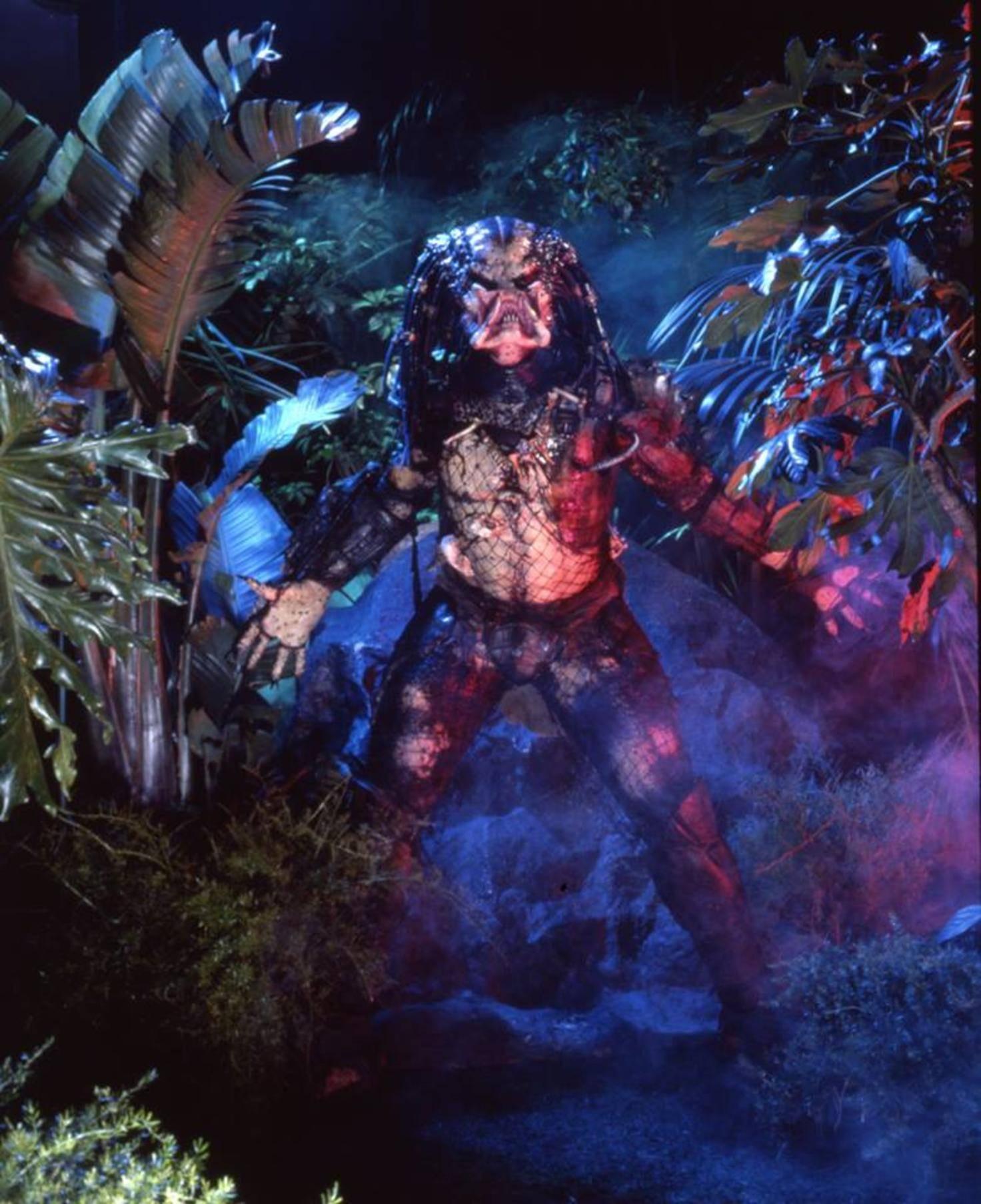 Dem Predator möchte man nicht unbedingt im Dunkeln begegnen.