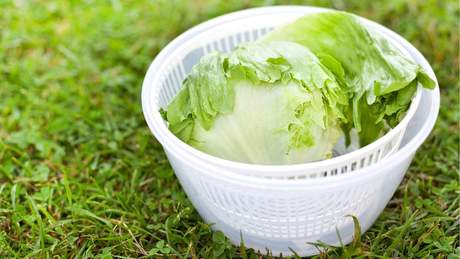 Feine Wäsche kann in der Salatschleuder getrocknet werden.