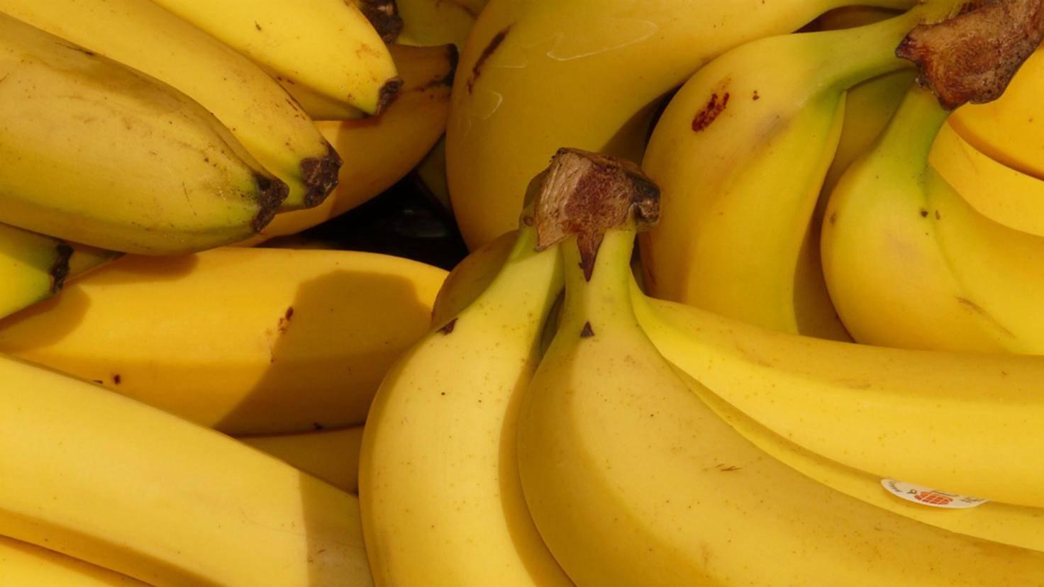 Keine Lust auf braune Stellen? Dann lagere Bananen besser nicht im Kühlschrank.