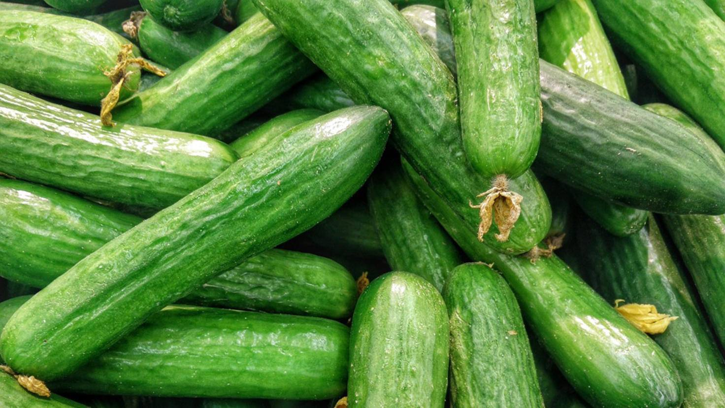 Gurken werden im Kühlschrank wässrig.