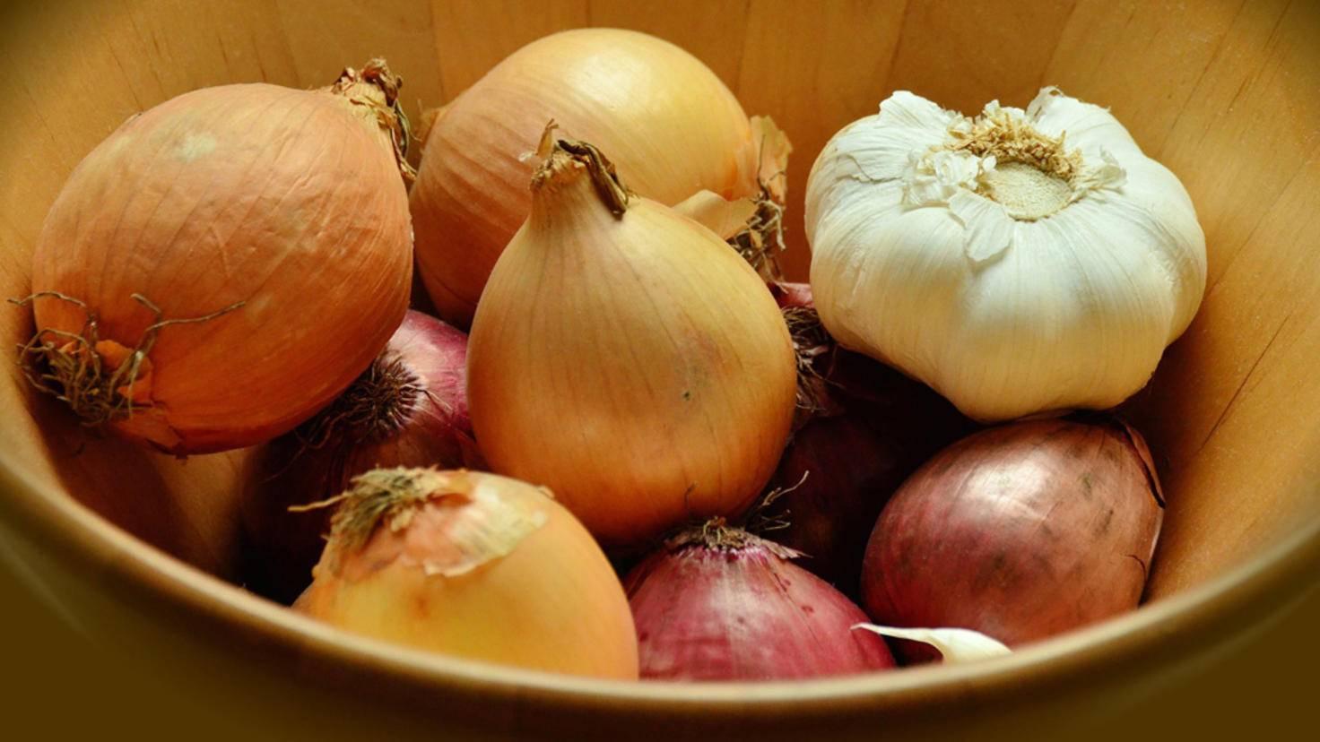 Knoblauch und Zwiebeln mögen Trockenheit – damit kann der Kühlschrank nicht dienen.