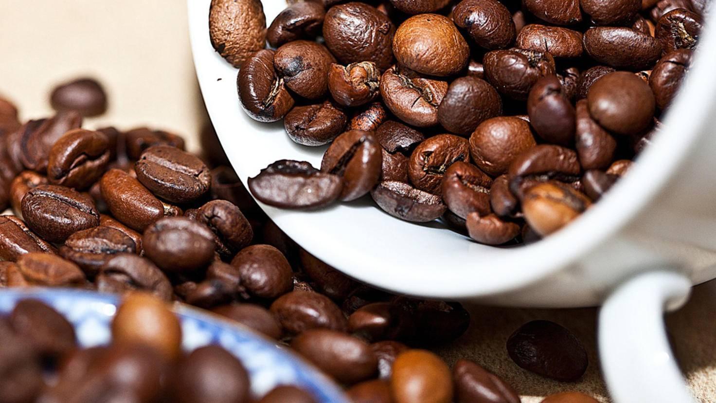 Die Basis jedes guten Filterkaffees sind gute Kaffeebohnen.