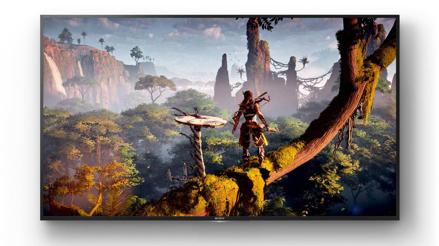 Sony PS4 Horizon Zero Dawn