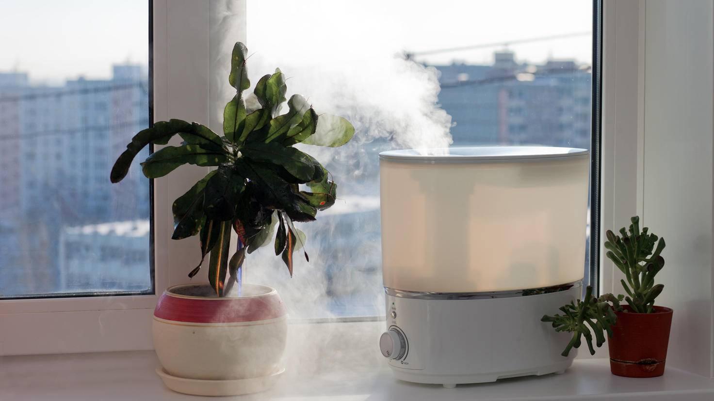 Ein Luftbefeuchter reichert die Luft mit Feuchtigkeit an.