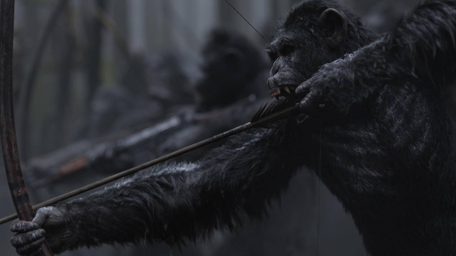 Planet der Affen Survival