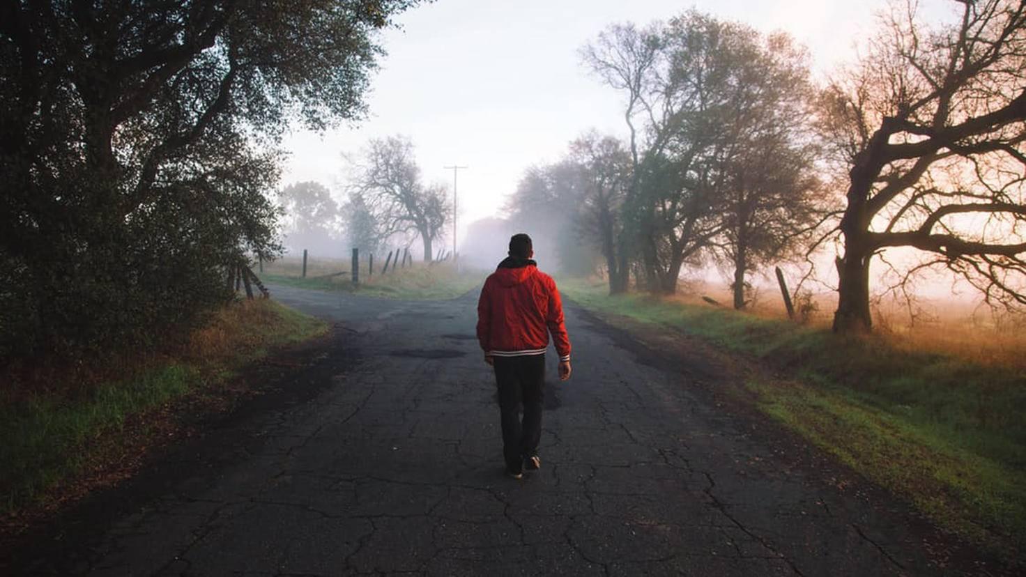 Ein Spaziergang kurbelt den Energieverbrauch an.