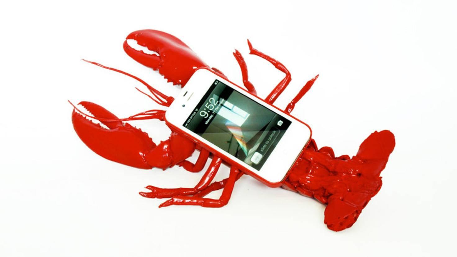 Case-lobster