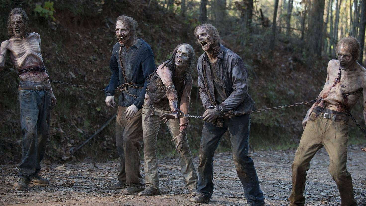 "Szene aus ""The Walking Dead"""