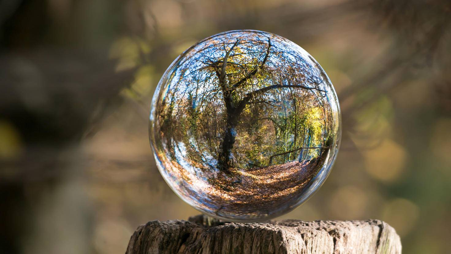 Auf Holzoberflächen bleibt Deine Glaskugel manchmal von allein am Platz. Bei glatterem Untergrund musst du eventuell nachhelfen.