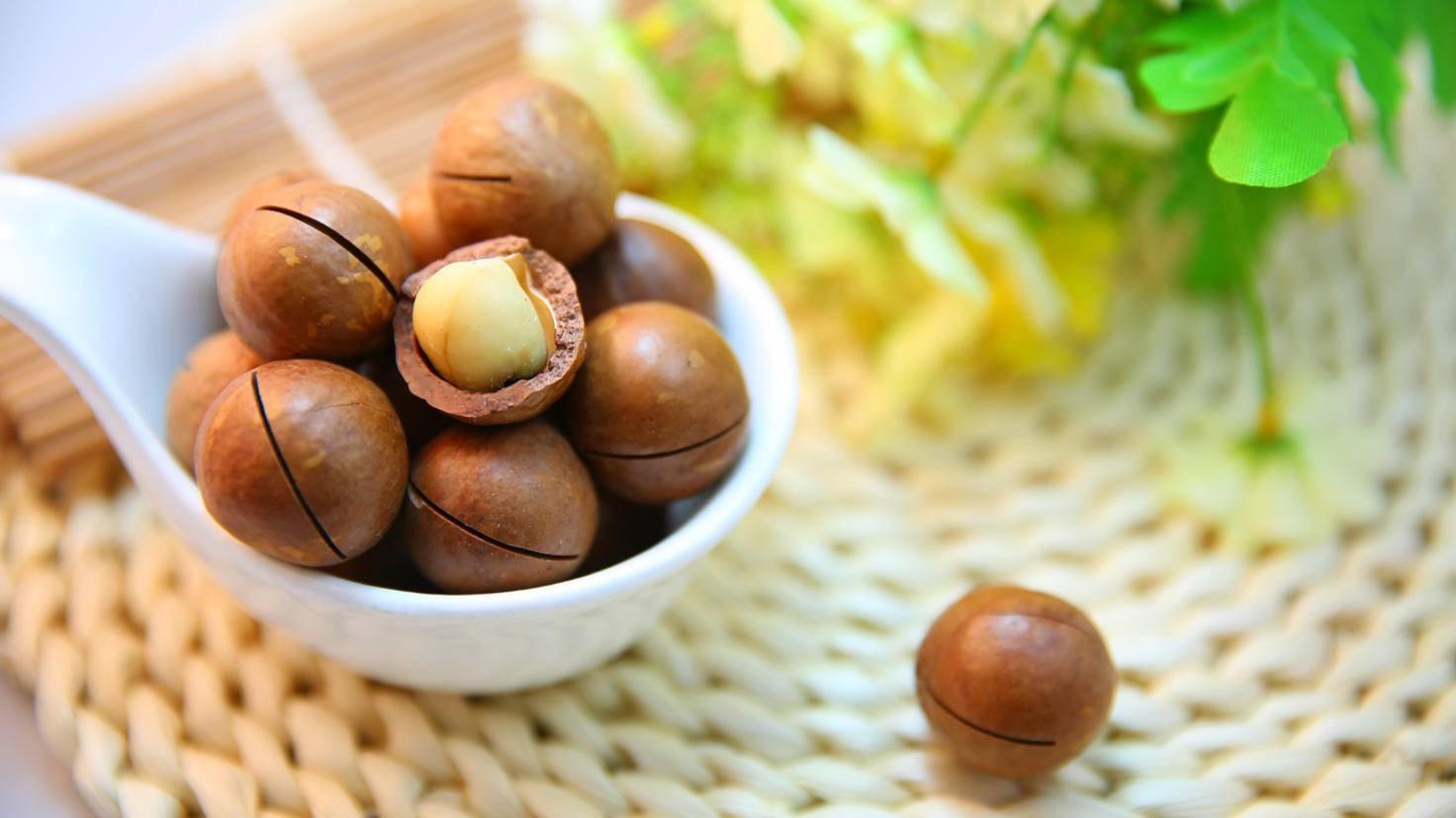 Nüsse Macadamia