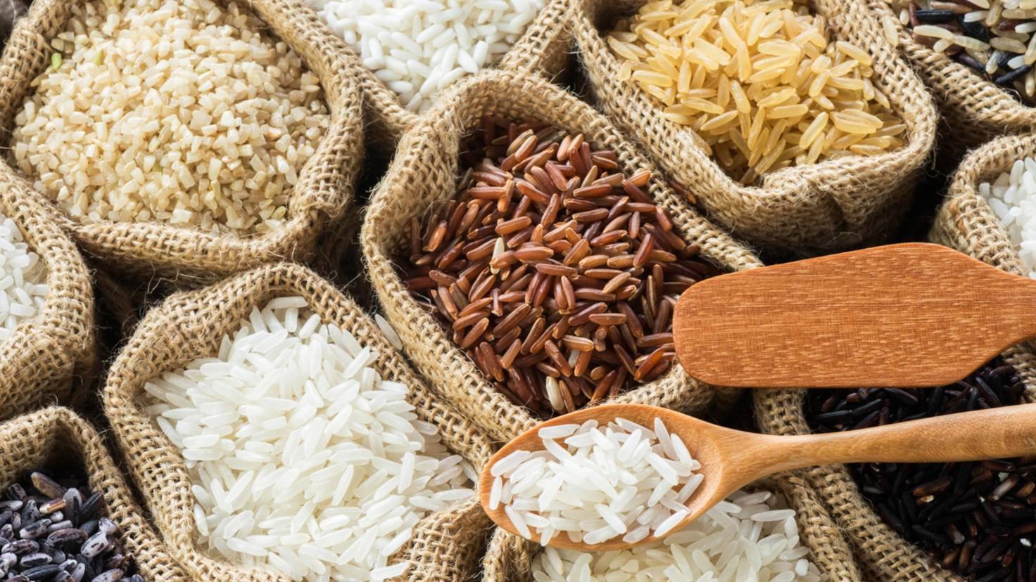 Körnige Vielfalt: Weltweit gibt es über 100.000 Reissorten.
