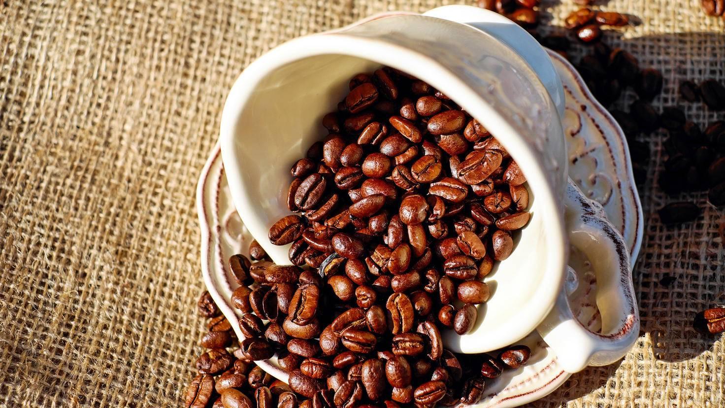 Für einen leckeren Kaffee braucht es die richtige Bohne mit der richtigen Röstung.