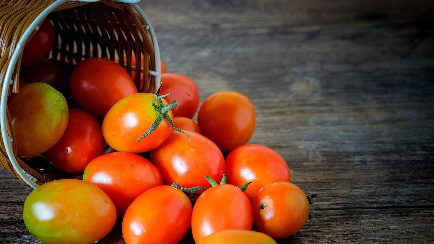 Cherry-Tomaten im Snack-Format extra vorher waschen? Ja, bitte!
