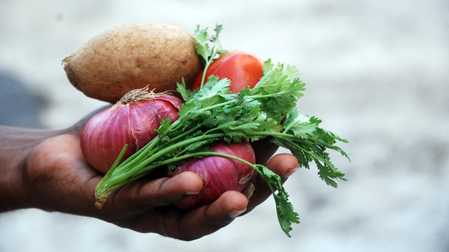 Volle Kontrolle: Wer sein Gemüse selbst anbaut, bekommt es günstig und weiß, was drin ist.
