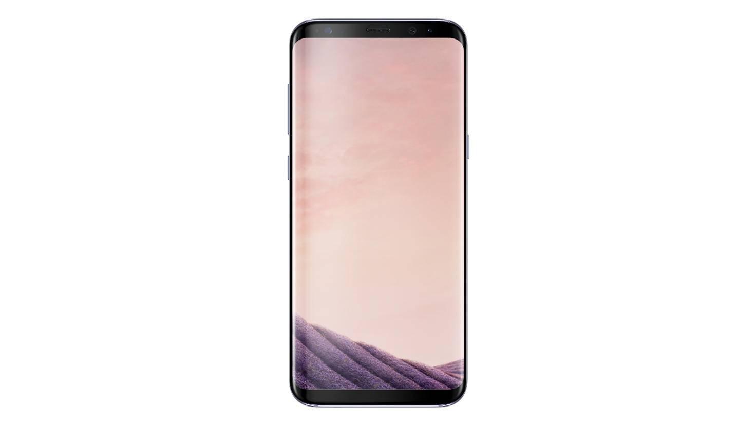 Das Galaxy S8 in Orchid Grey.