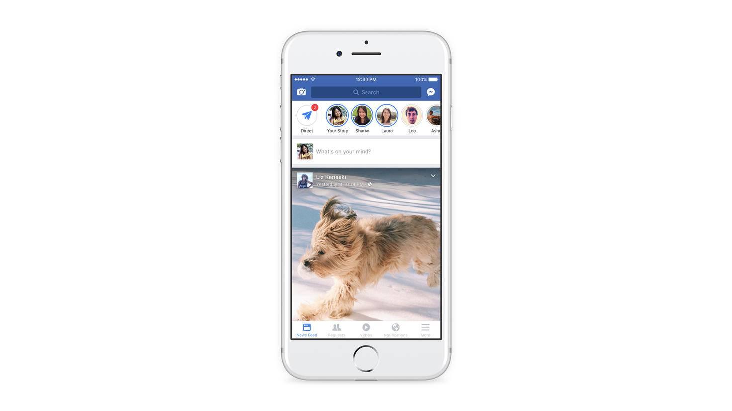Facebook Effekte