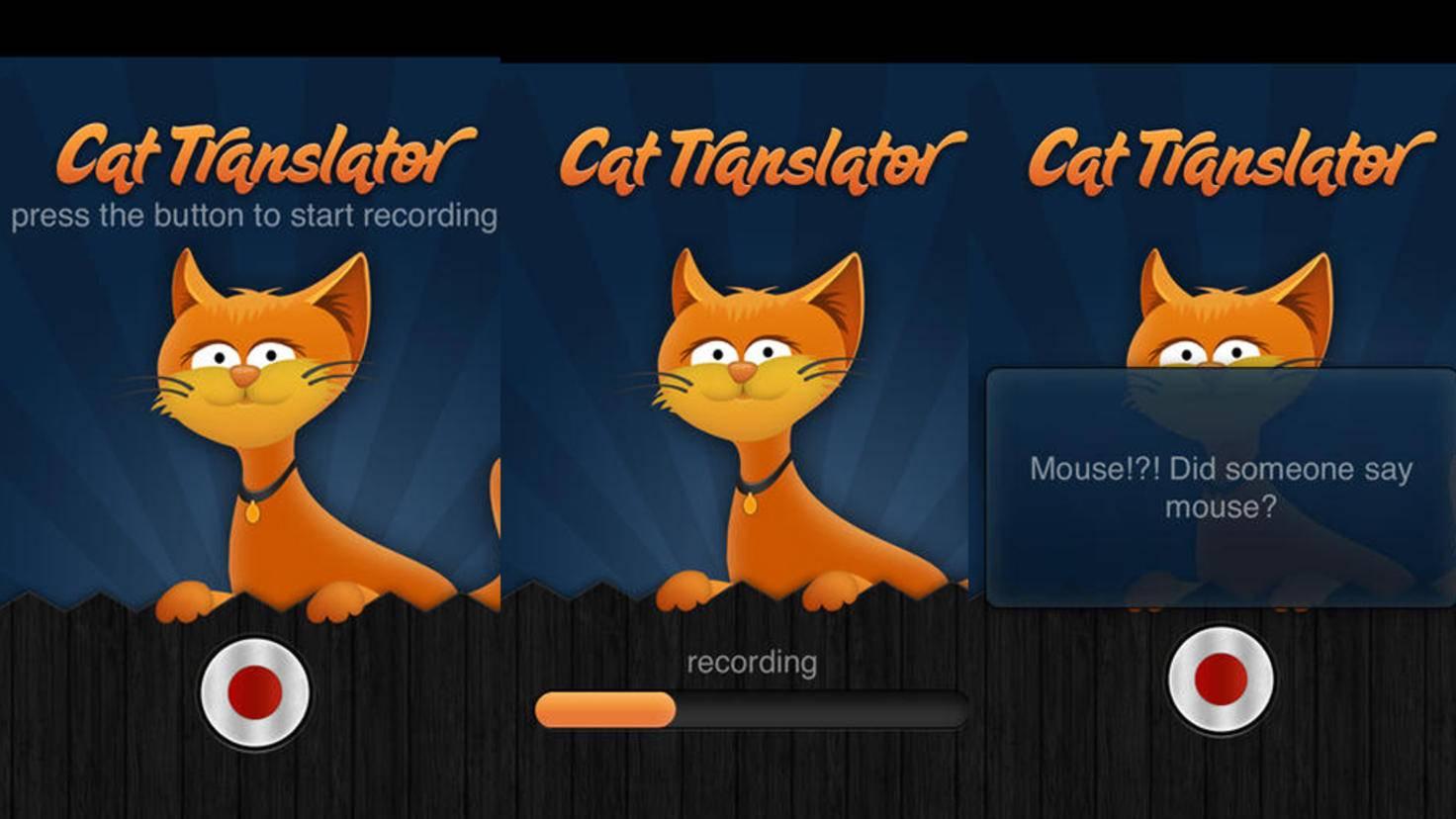Cat-Translator