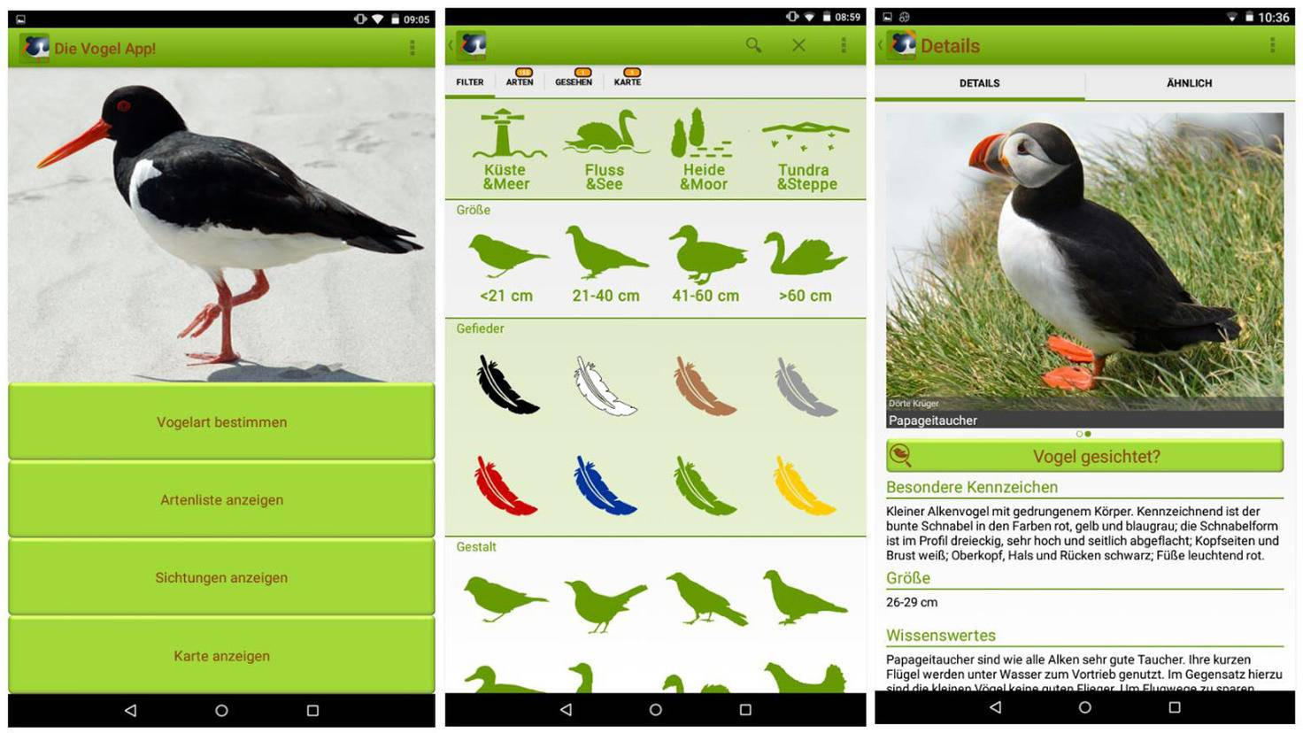 Die Vogel App-Google Play Store-Dörte Krüger