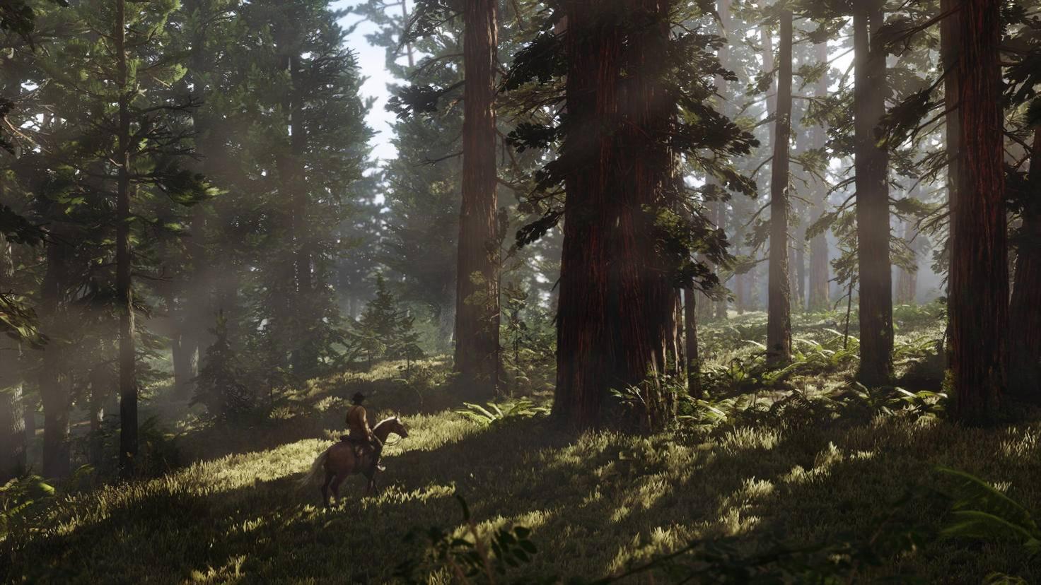 Red Dead Redemption 2 Screenshot Wald