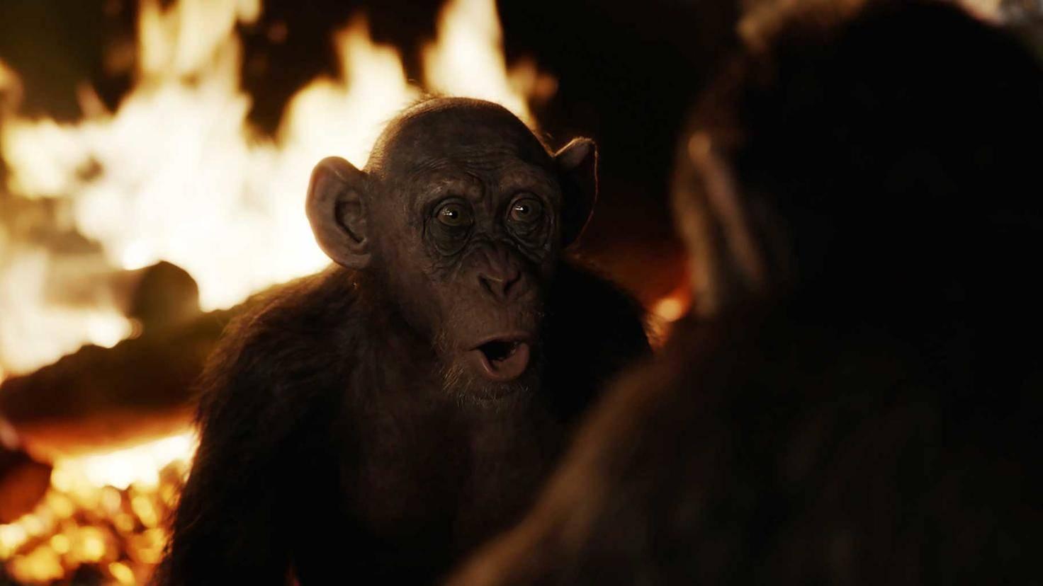 """Ein Highlight von """"Planet der Affen: Survival"""": Steve Zahn als Bad Ape."""