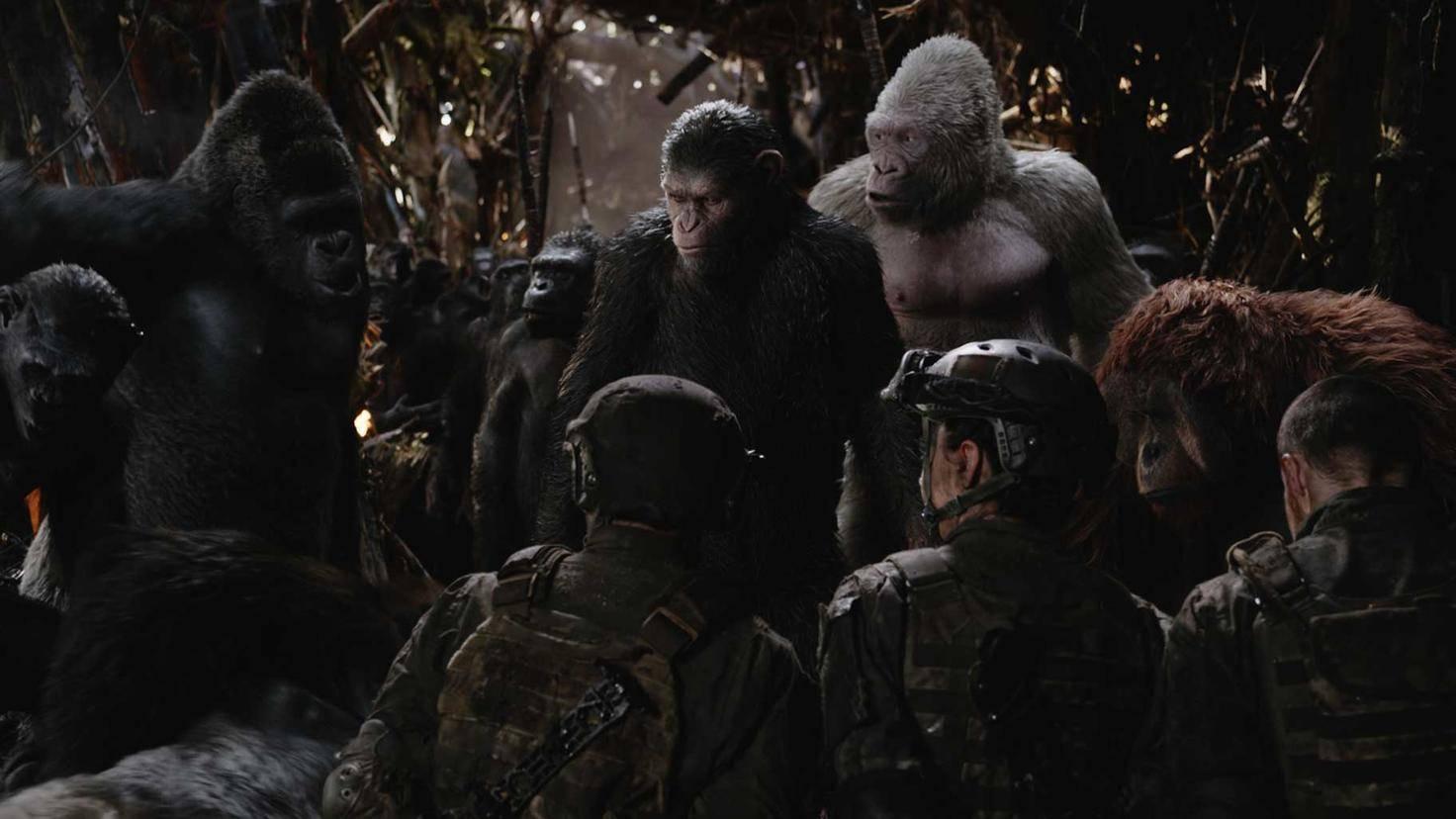 """Menschliche Figuren spielen in """"Planet der Affen: Survival"""" kaum eine Rolle."""