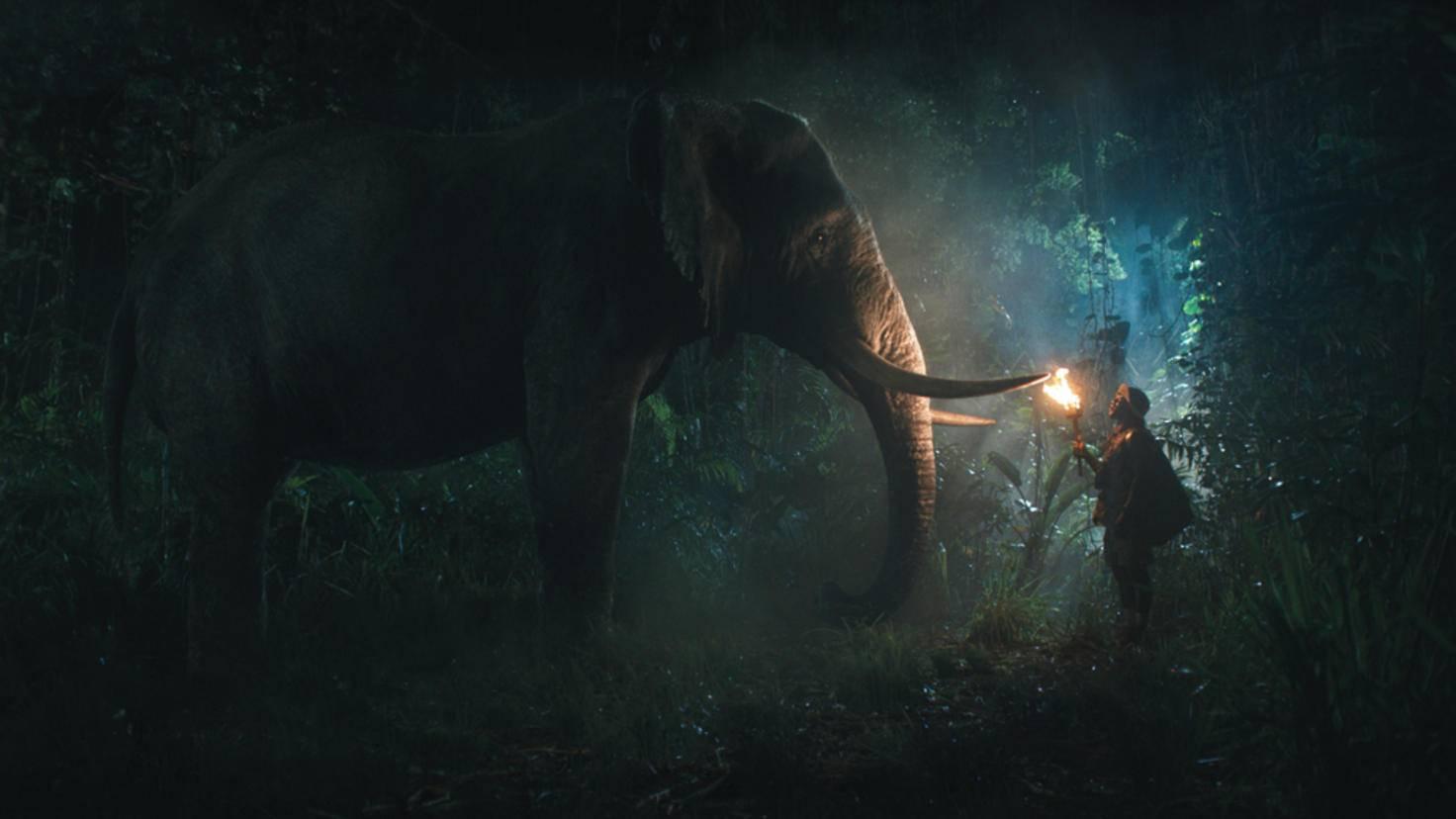 Kein Wunder: Mitten im Dschungel trifft man auf tierische Weggefährten.