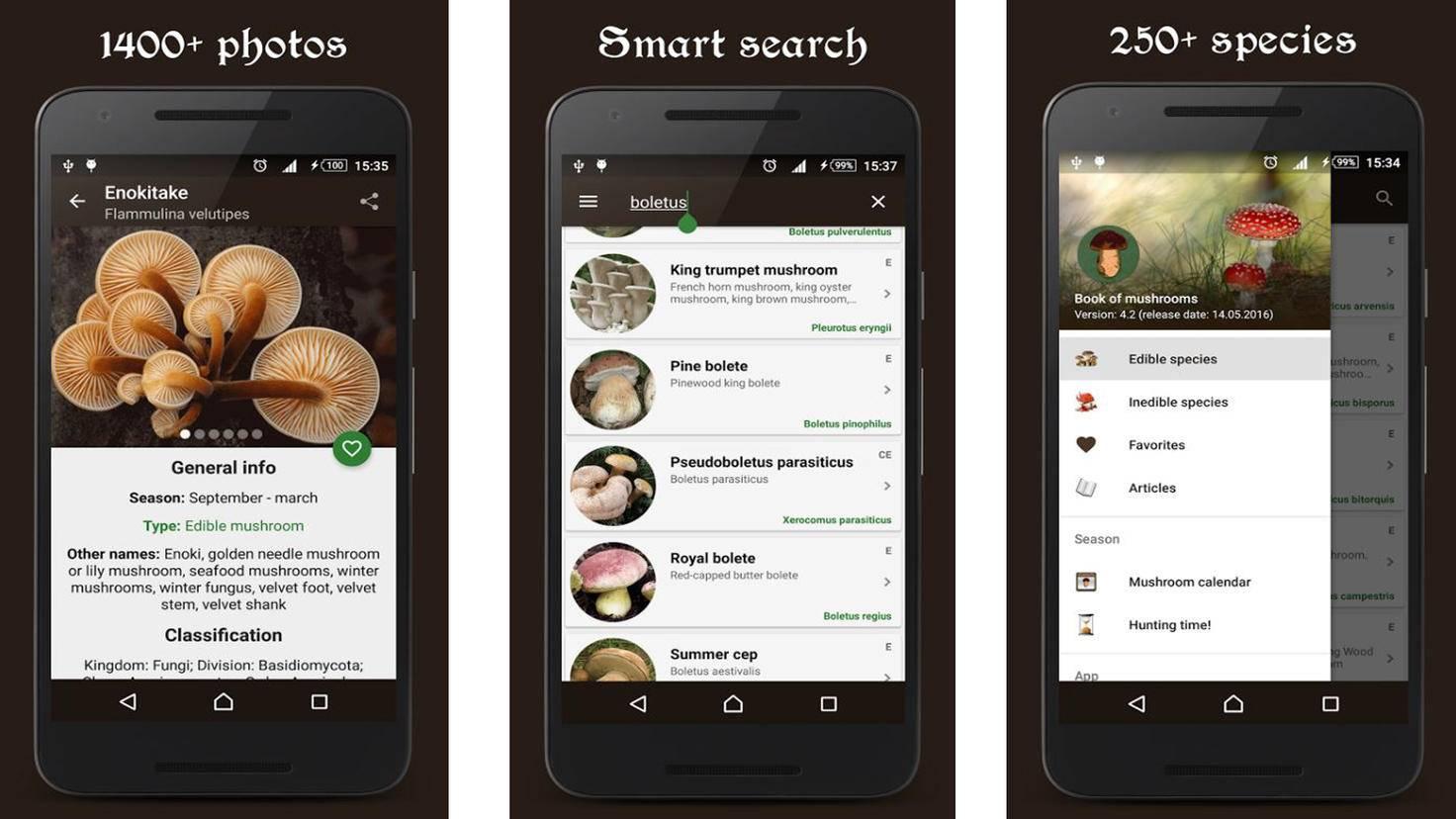 Book of Mushrooms-Google PlayStore-headcorp