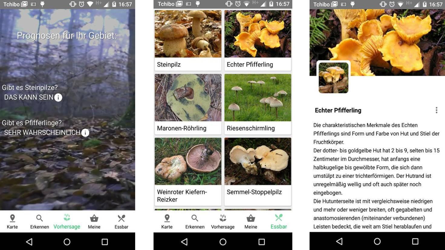 Pilzator-Google PlayStore-TheNiceOne