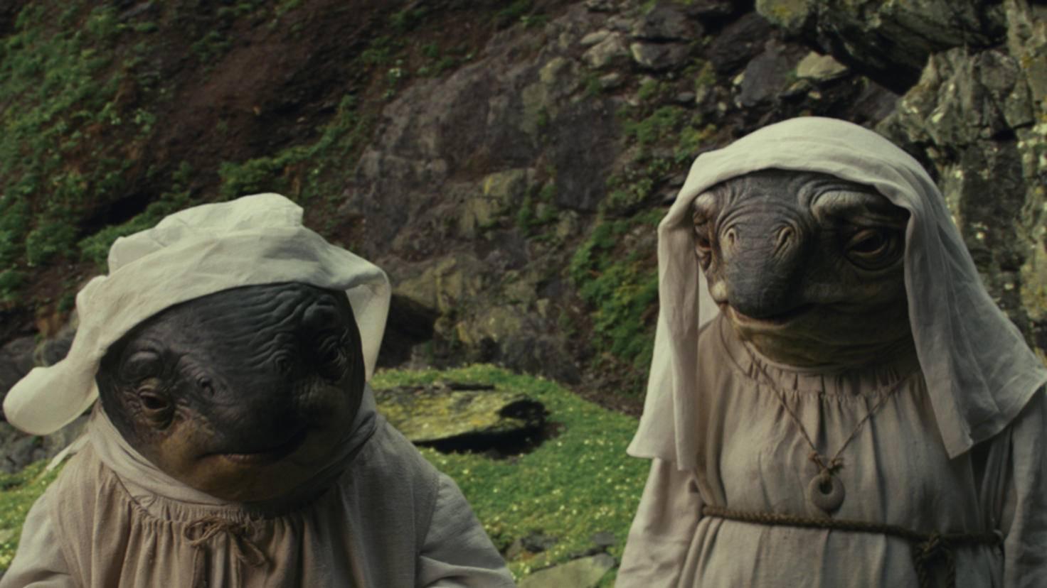 """Neben den Porgs sind auch die Caretakers neue Wesen im """"Star Wars""""-Universum."""