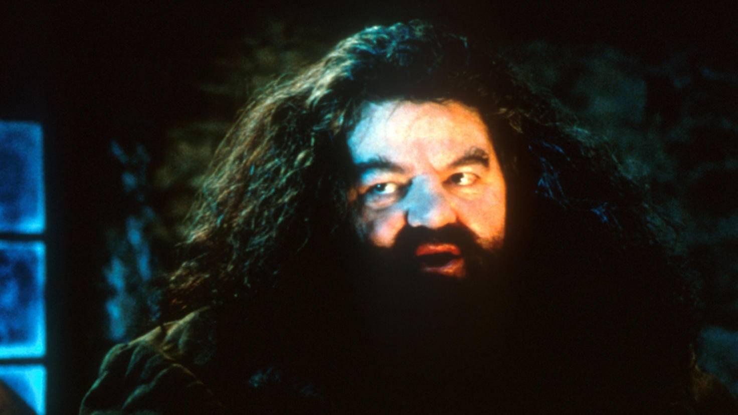 Harry Potter Rubeus Hagrid