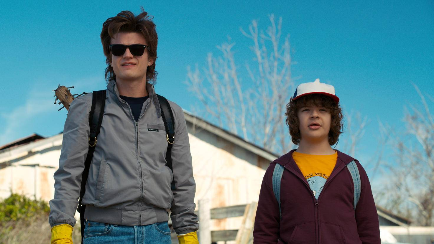 Stranger Things Dustin Steve