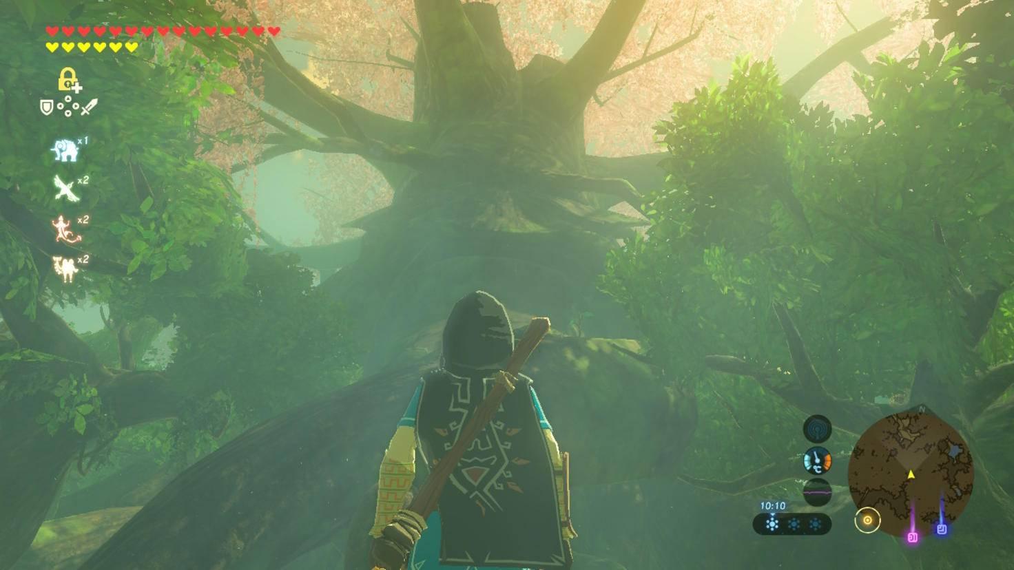Der mächtige Deku-Baum wacht über das Master-Schwert. Link muss sich der legendären Waffe erst würdig erweisen.