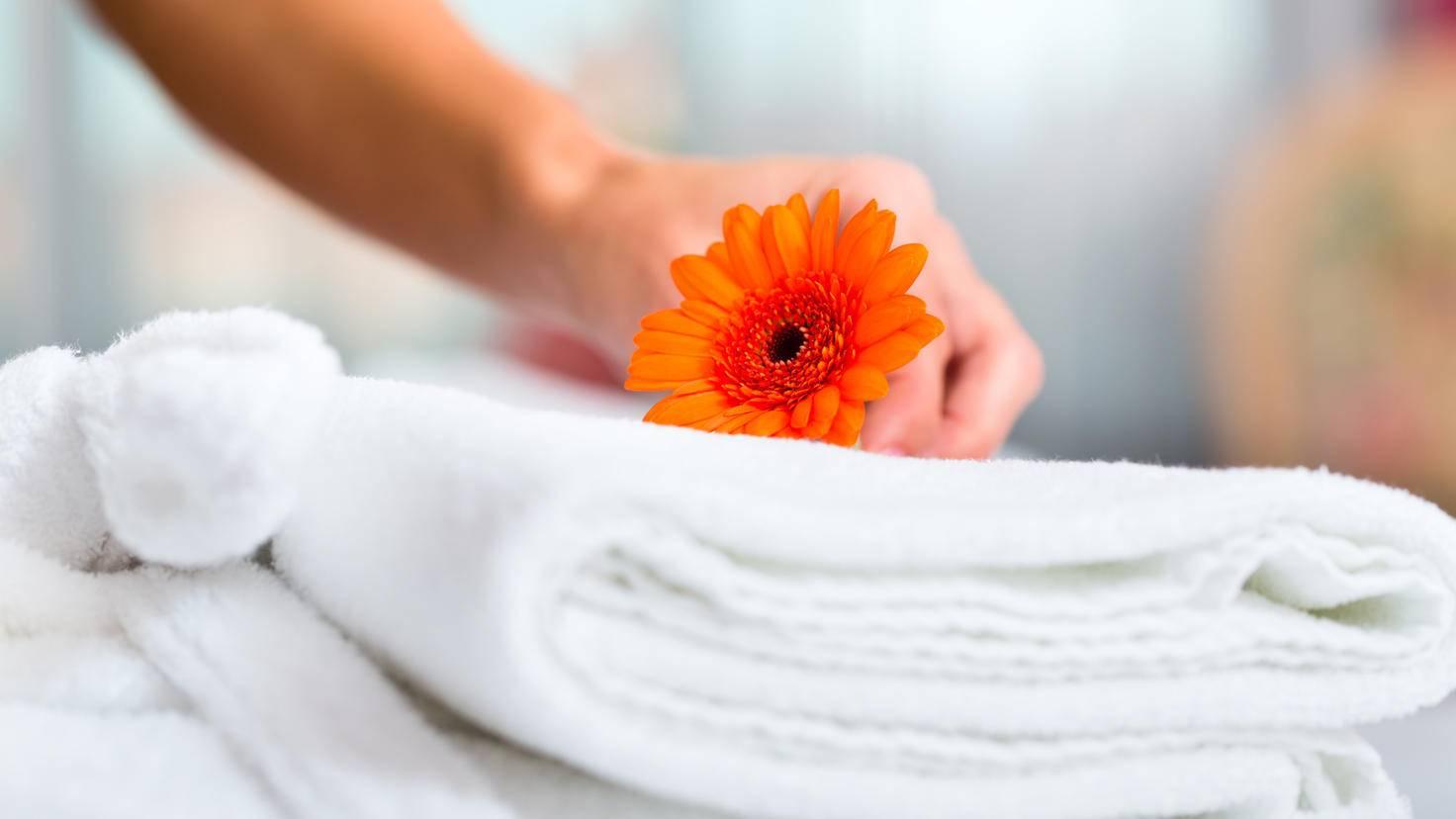 Wäsche-waschen-Umwelt-Blume-AdobeStock-Kzenon-46719331