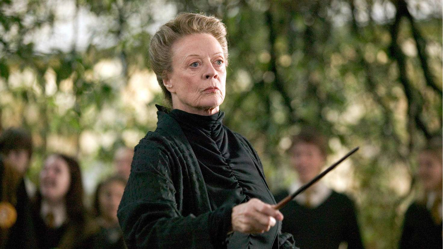 Harry Potter feuerkelch mcgonagall