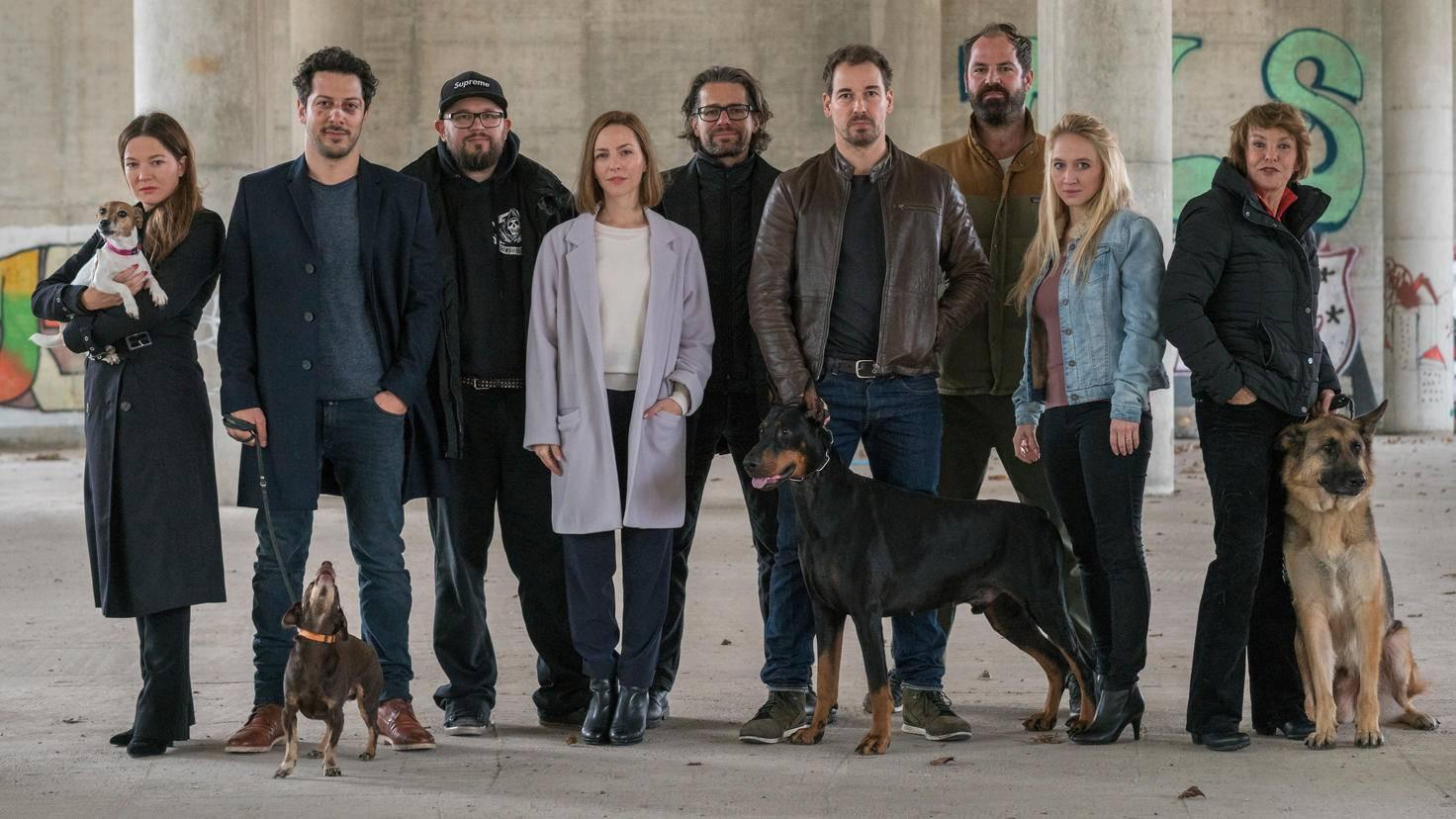 """Jeder Charakter in """"Dogs of Berin"""" hat seine eigene, endlos lange Hintergrundgeschichte."""