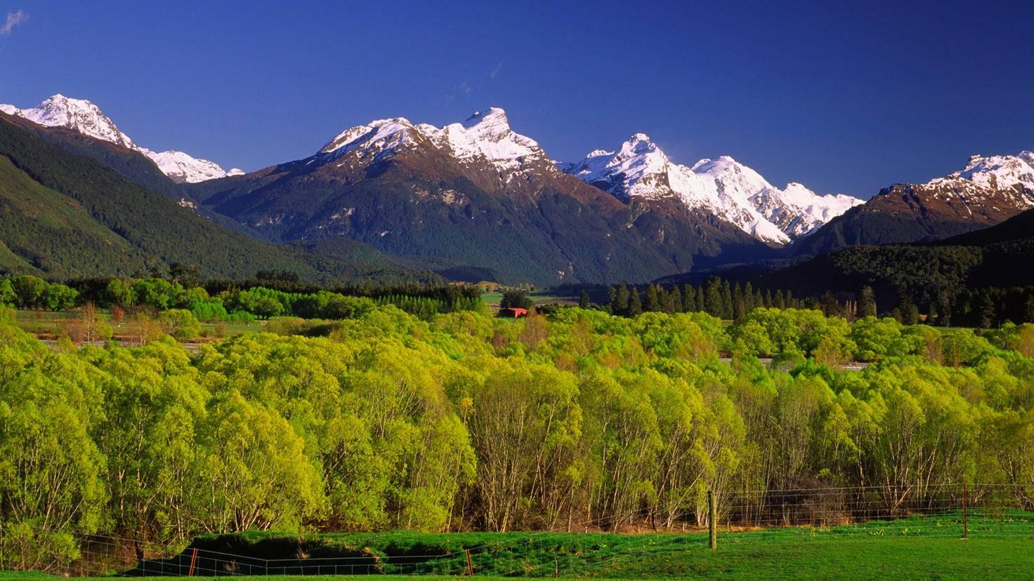 Lothlorien-Herr der Ringe Drehorte-Neuseeland-Radius Images-GettyImages-77027060