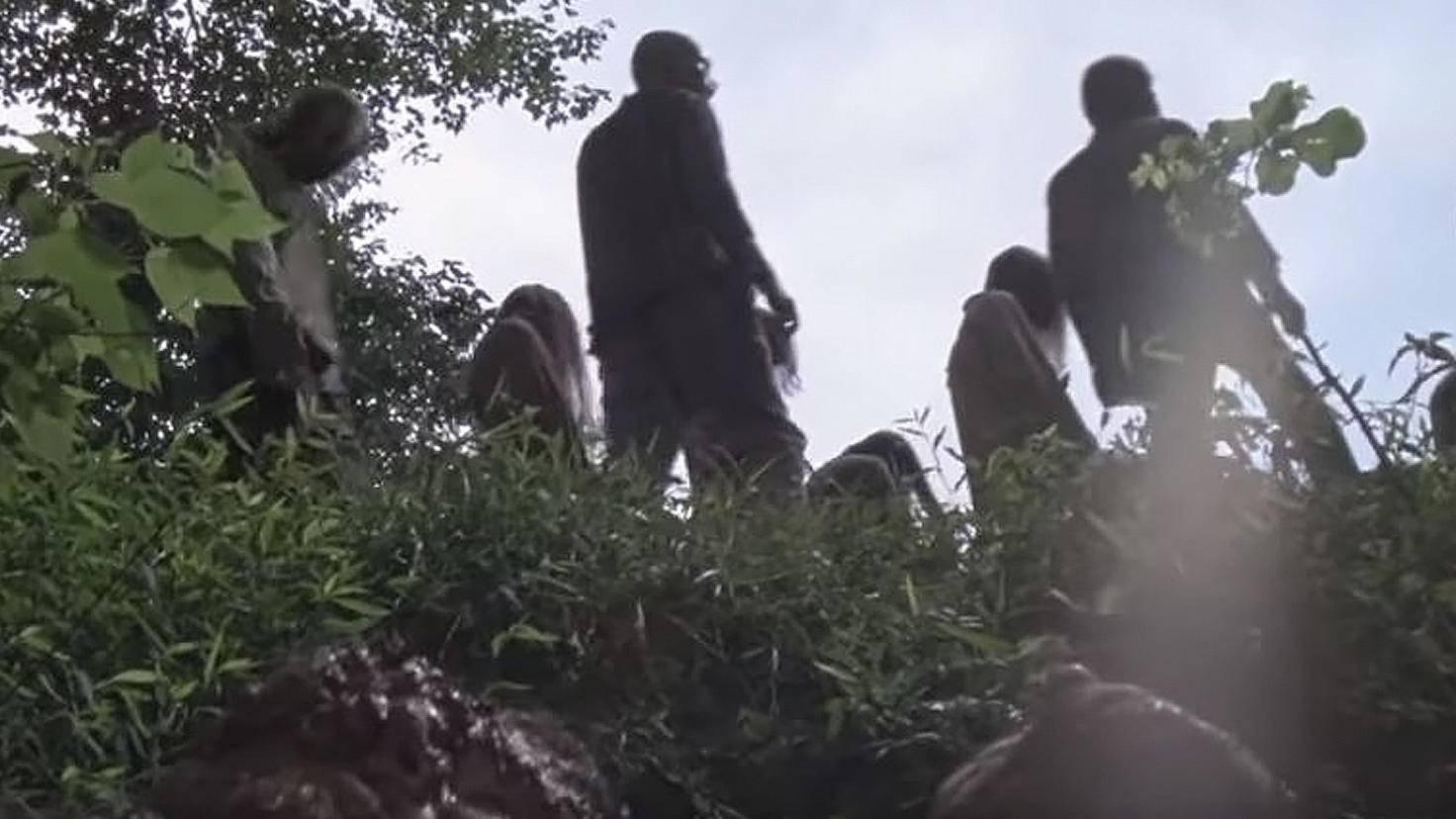 The Walking Dead-S09-Trailer-YouTube-TV Guide-Whisperers flüstern