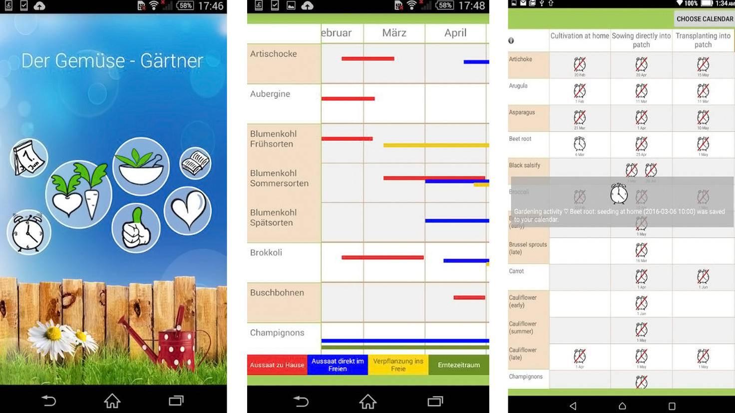 Der Gemüse Gärtner-App-Google Play Store-Daniel Puschina