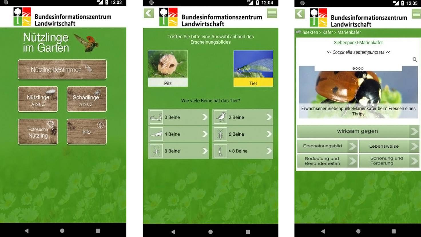 Nützlinge im Garten App-Google Play Store-Bundesanstalt für Landwirtschaft und Ernährung