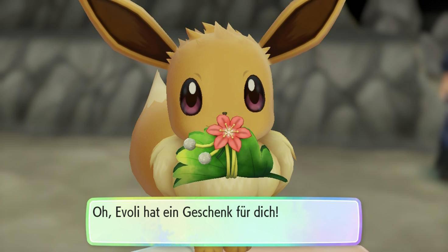 Sorge Dich um Dein Partner-Pokémon, dann sorgt es auch für Dich!