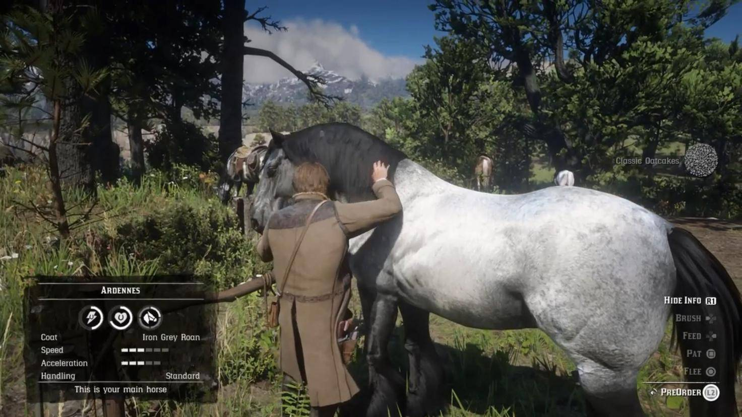 Auch Pferde wollen von Zeit zu Zeit gefüttert werden.