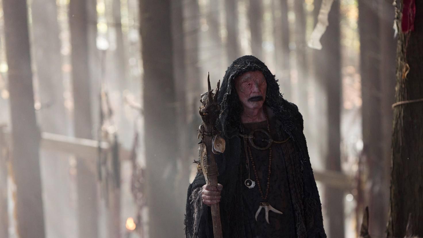 Der Seher in Vikings Staffel 1