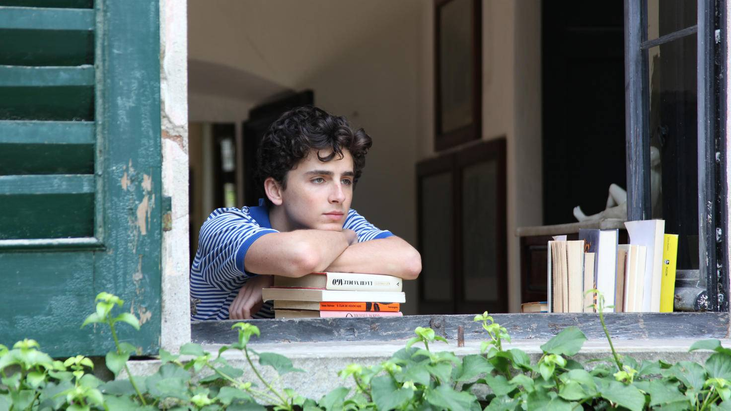 call me by your name Timothée Chalamet
